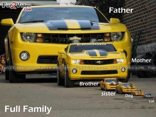 car-family-funny-picture