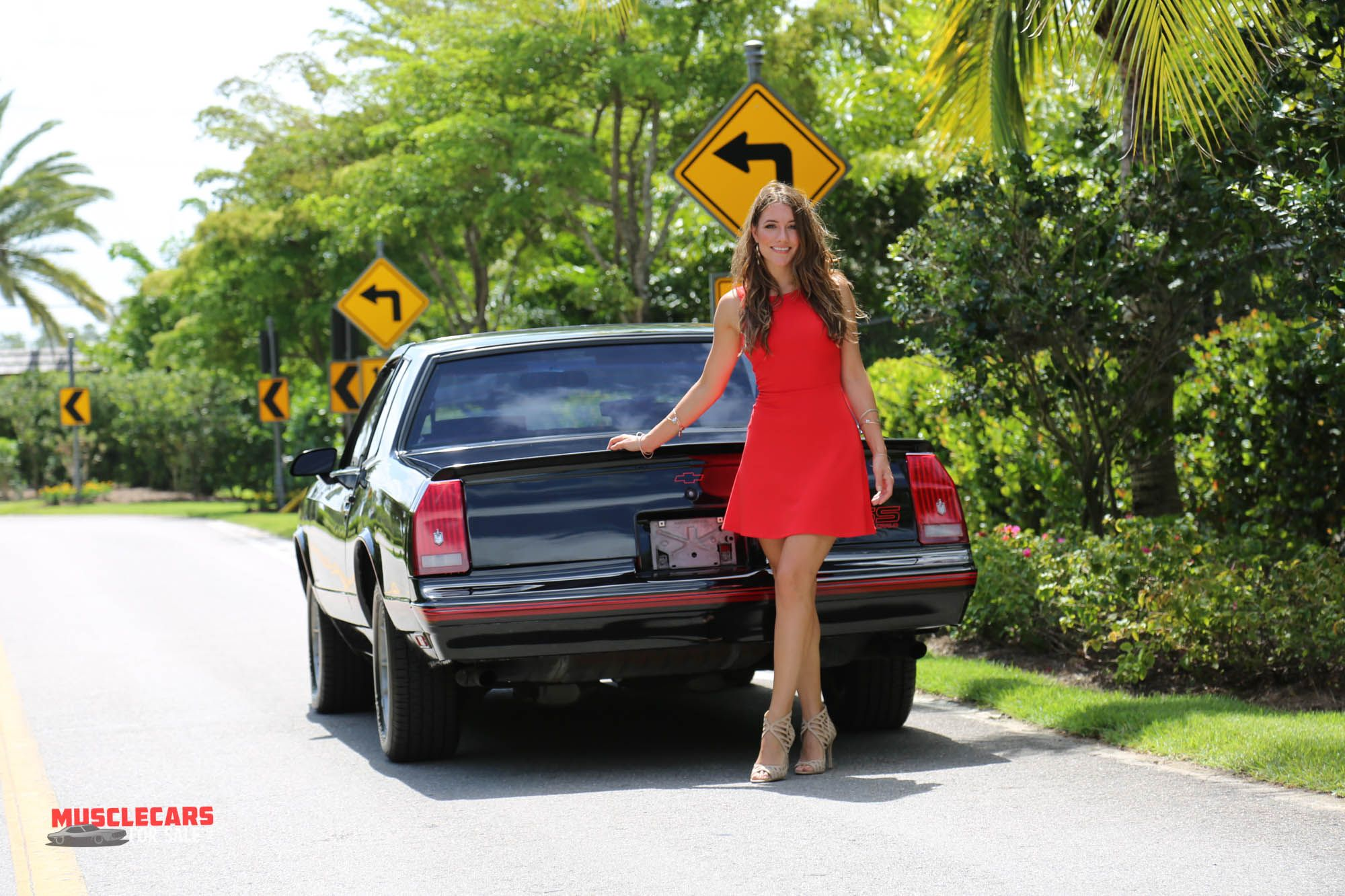 pinups  shannon brooke imagery  collector cars
